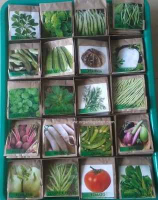 25 Varieties Vegetable Seed Pack